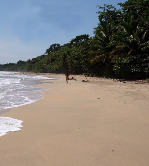gallery-beach-1